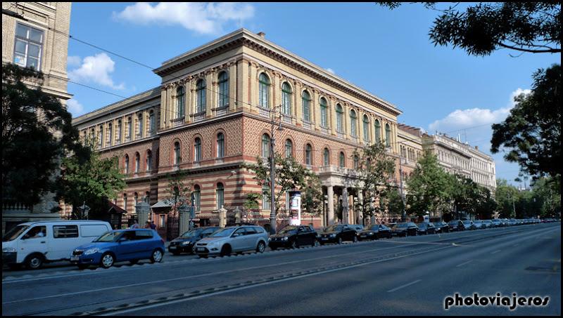 Avenida de los Museos