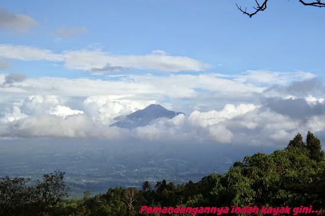 Pemandangan dari kaki Gunung Salak