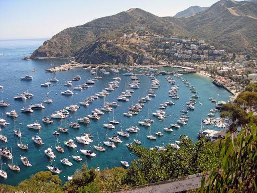 Avalon Bay, Santa Catalina.  Walkabout Malibu to Mexico: Hiking Inn to Inn on the Southern California Coast