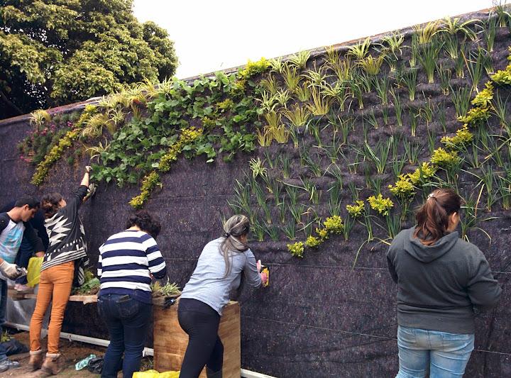 Jardn vertical en el botnico de Bogot Colombia Urbanarbolismo