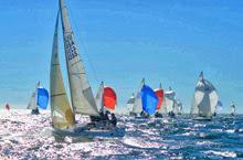 J/24s sailing North American Championship- Newport, RI
