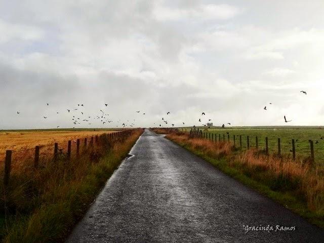 viagens - Passeando por caminhos Celtas - 2014 - Página 6 20%2B%286%29