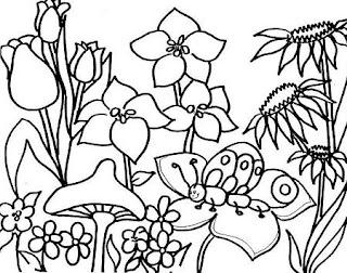 Dibujos De Primavera Clases De 4 Años De Educación Infantil Del