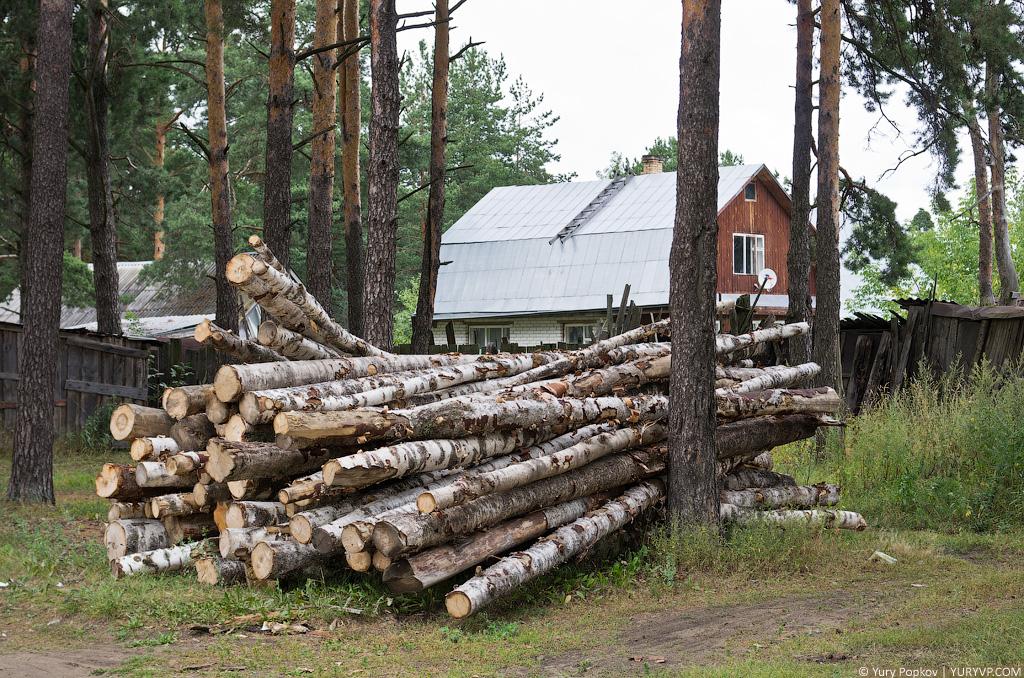 бесплатный лес на строительство дома закон