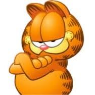 Kot Garfield
