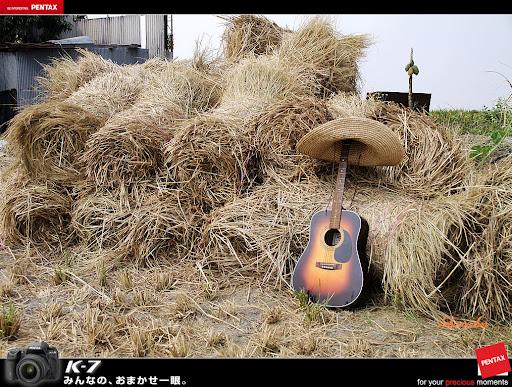 草帽小子與吉他王在稻草捲