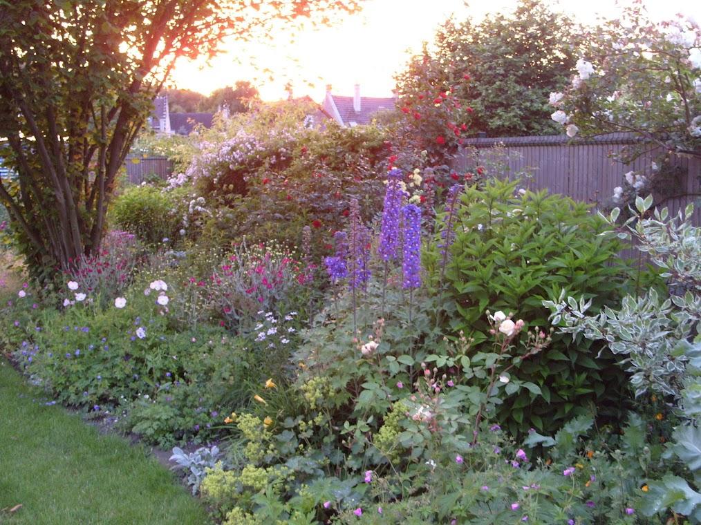 avis pour creer mon jardin