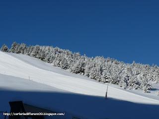 P1200145 - Nevando el sábado, paraiso el domingo.