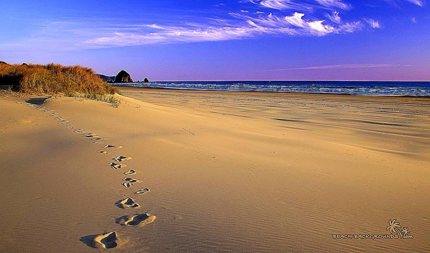 Download Fantastic Sandy Beach Wallpaper  Full HD Wallpapers