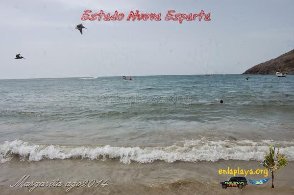 Playa Pedro Gonzalez, Estado Nueva Esparta, Municipio Gomez