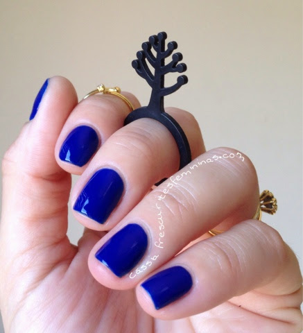 Arara Azul Maria Helena Misturinhas