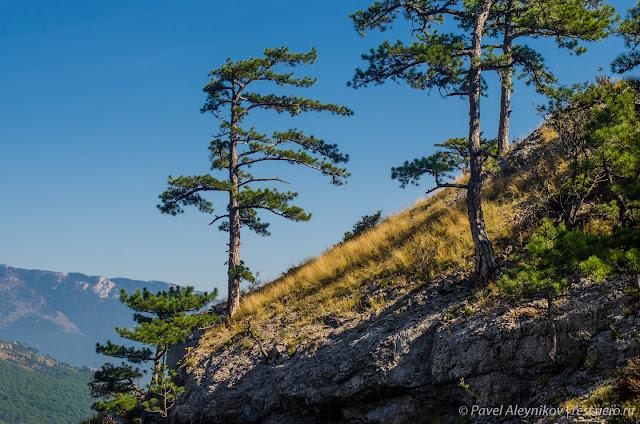 Вид на склон Ставри-Кая