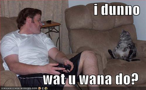 funny-pictures-lounging-cat-guy-plays-videogames.jpg