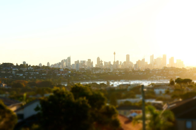 City Skyline from Dudley Reserve