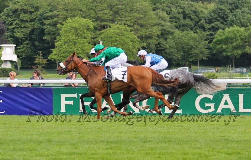 Photos Longchamp 25-05-2014 IMG_1444