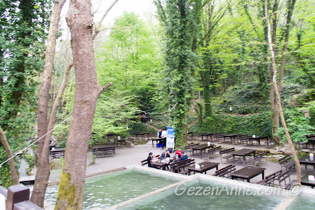 Vadi restoran alabalık havuzları ve ortamı, Maşukiye Kocaeli