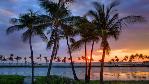 Tropical Moments, Anaehoomalu Bay, The Big Island, Hawaii.jpg