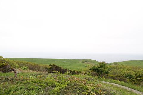 焼尻島の風景 その1