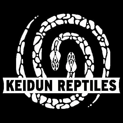 Brett Keith (Keidun Reptiles)