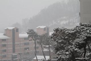 2012_01_31 Snow