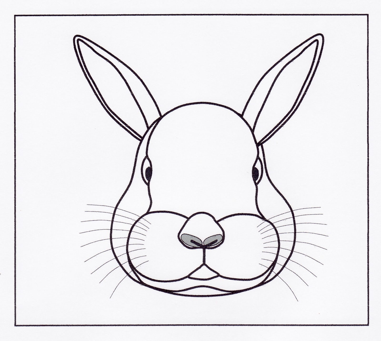 rabbit head drawing