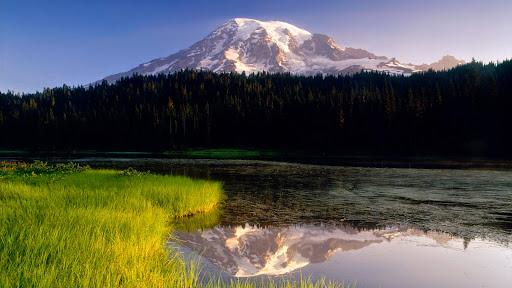 Reflection Lake in Morning Light, Washington.jpg