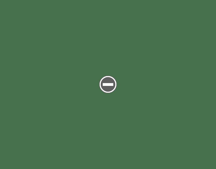 Blaireaux en métal - Page 2 IMG_1995%2B%2528Custom%2529