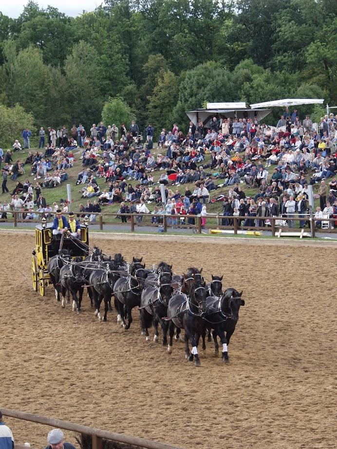 Postkutsche bei der Pferdeshow Hengstparade Moritzburg bei Dresden