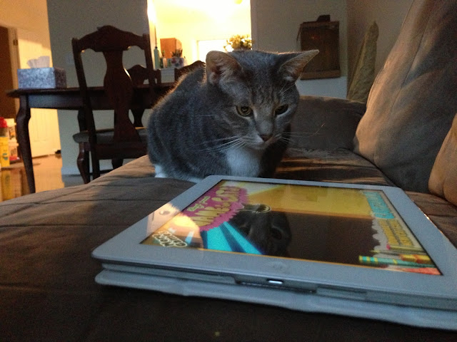 iPad kitty