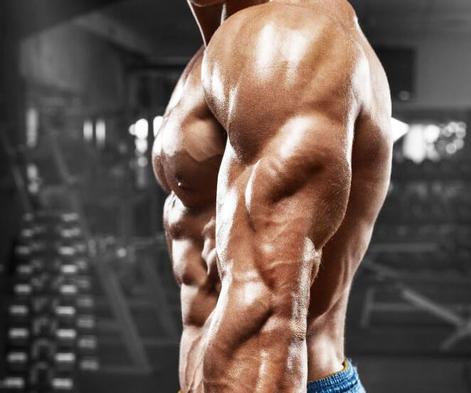 Best arm exercises: the triceps