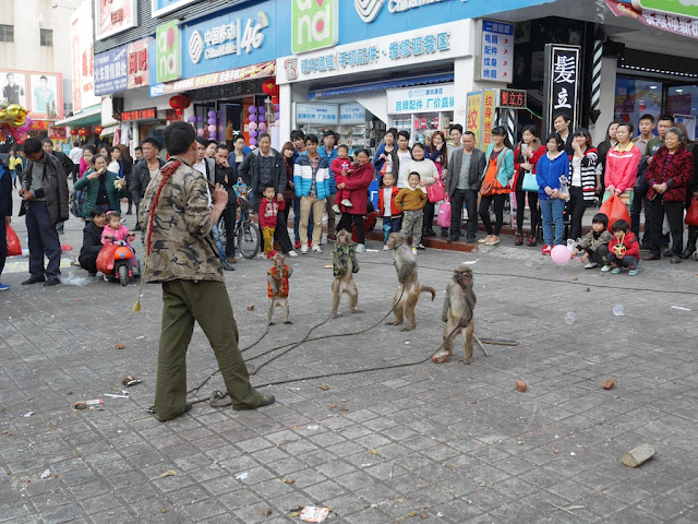 monkeys performing in Nanping, Zhuhai