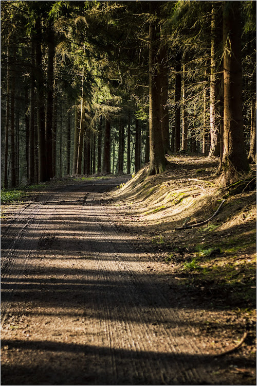 Shot in Kürten, Germany. It's getting more and more cold here, one week before christmas. If you feel...