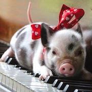 К чему снятся свинья и поросята?
