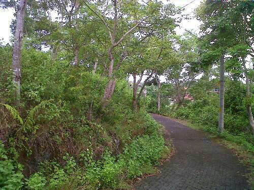 Tanah dijual di Bali, Pecatu, luas 850 m2, lokasi di kawasan villa, dengan view laut dan sunset