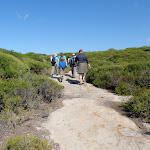 Walking across Jibbon Head (171996)