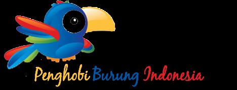 Burung Jenis Burung Perawatan Burung Lomba Burung Bisnis Burung Wisata