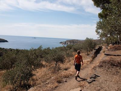 Camí Vell de Cadaqués al Cap de Creus, amb les característiques parets de pedra seca