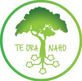 Illustration du profil de teoranaho.fape
