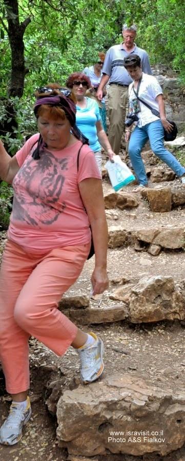 Пешеходный поход по горе Мирон. Швиль писга Мирон. Экскурсия по Верхней Галилее. Гид в Галилее Светлана Фиалкова.