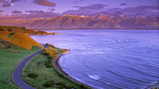 Kaikoura Peninsula, South Island, New Zealand.jpg
