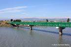 Bill Lockyer Bay Trail Bridge