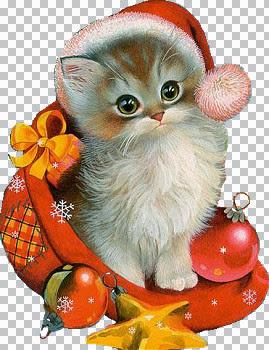 201_(XMAS)_Xmas Cat.jpg