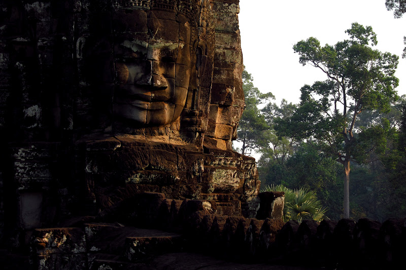 Bayon face with jungle