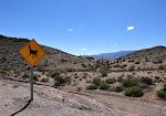 Salta sud: El Parque national de los Cardones