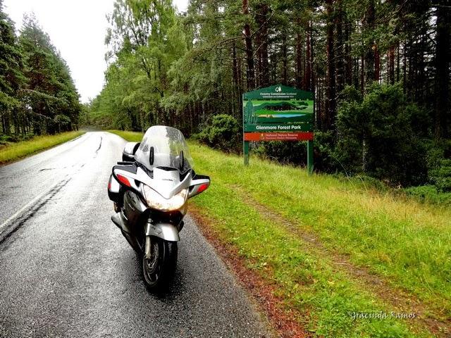 viagens - Passeando por caminhos Celtas - 2014 - Página 6 20%2B%288%29