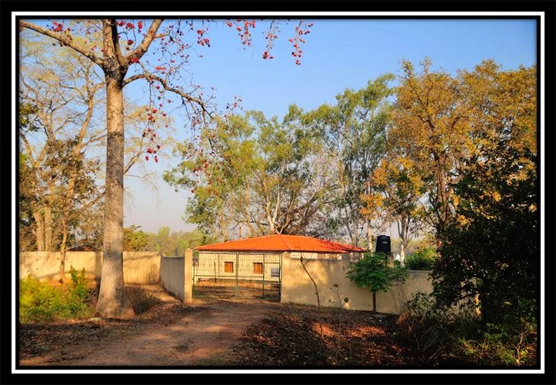 Keckhki - Forest Rest House