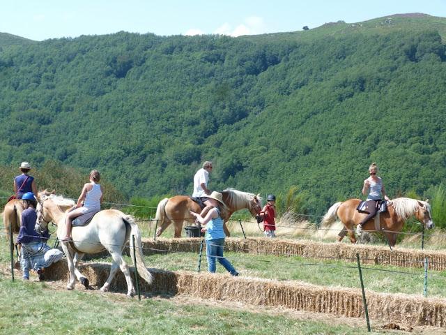 Fête du Haflinger les 16 et 17 aout 2013 a Ajoux (07) P1170156%2520%25281024x768%2529