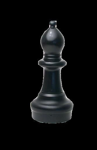 blackbishop,chess,yangpentingsharecss