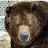 Barry Kimsey avatar image