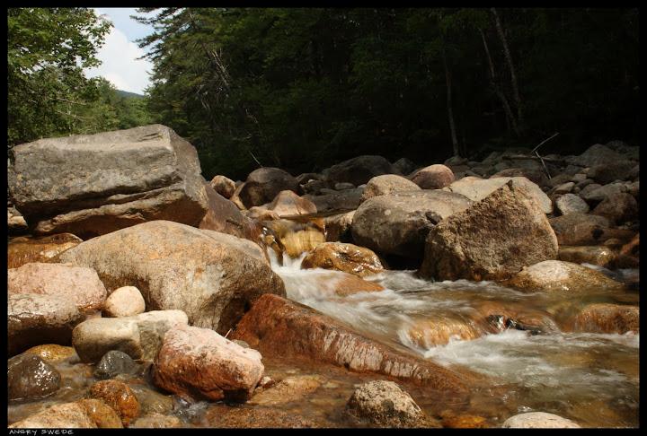 otter rocks